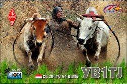 YB1TJ QSL CARD